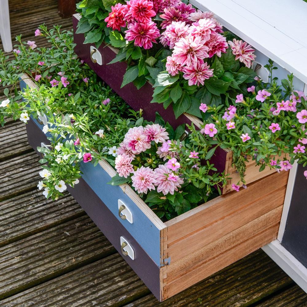 DIY hergebruik ladenkastjes in je tuin, plant er bloemen in en geniet er nog jaren van