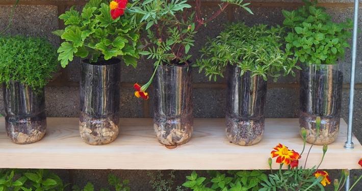 DIY planten bloempotten idee met plastic flessen