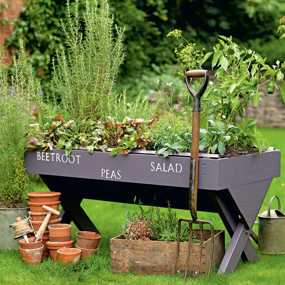 Mini moestuintje voor op het terras of ergens achter in je tuin